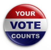 Badge - 2008 election