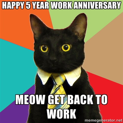 5 year cat