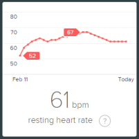 resting heart rate